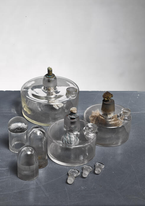 Bloomberry - Set of three oil lamps, Sweden, circa 1900