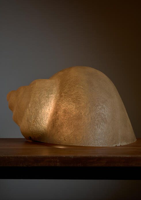 Bloomberry - Sergio Camilli Snail Lamp for Bieffeplast, Italy, 1974